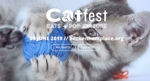 Catnap at Catfest - 29th June!