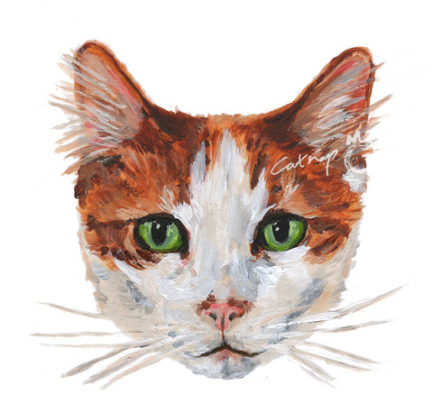 Custom pet portrait. Hand Painted Cat Portrait.