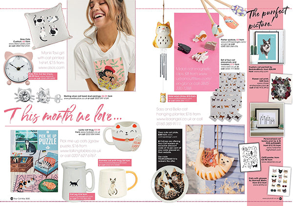 Catnap cat plate in Your Cat Magazine May edition