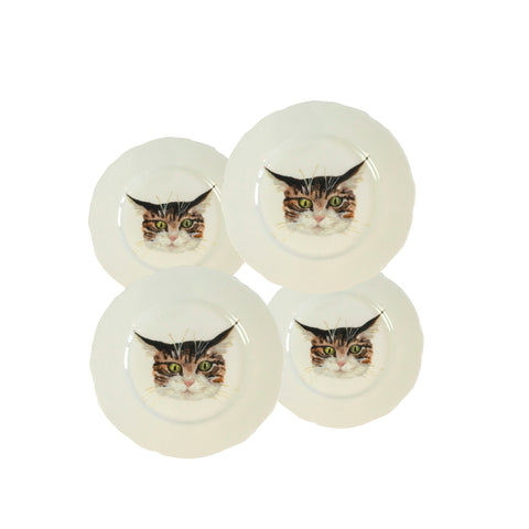 Cat face plates. 4 White china coupe plate with illustrated tabby cat faces on them. A mix of sizes. Catnap Design London.