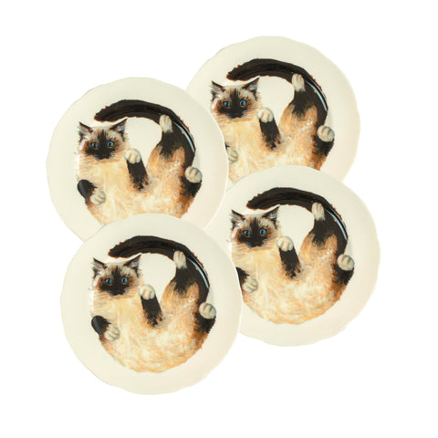 White china plates with illustrated Ragdoll cats printed on them. Dinner Plate Size. Catnap Design London