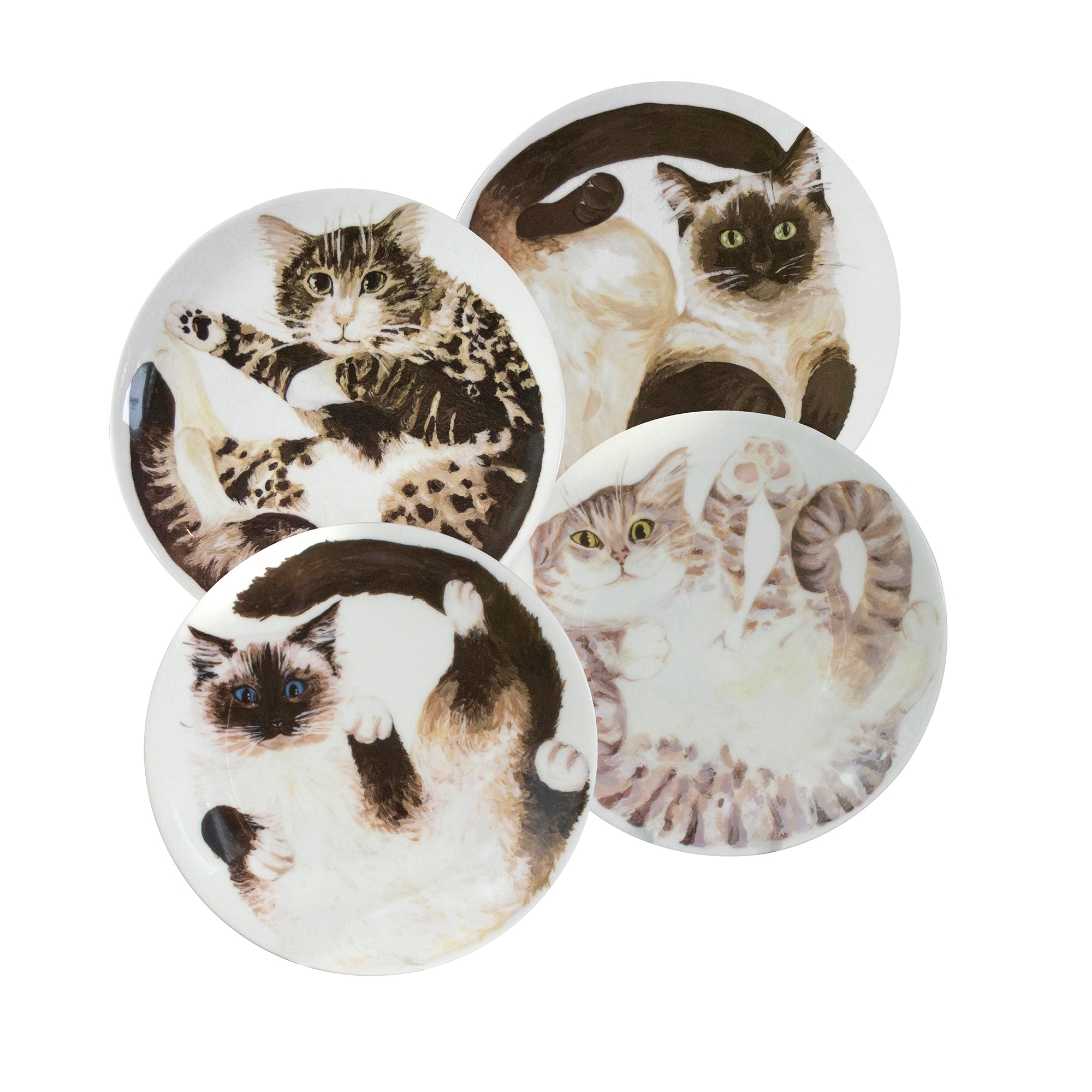 Cats on plates. 4 china coupe plates with a illustrated cats on them. Catnap Design London.
