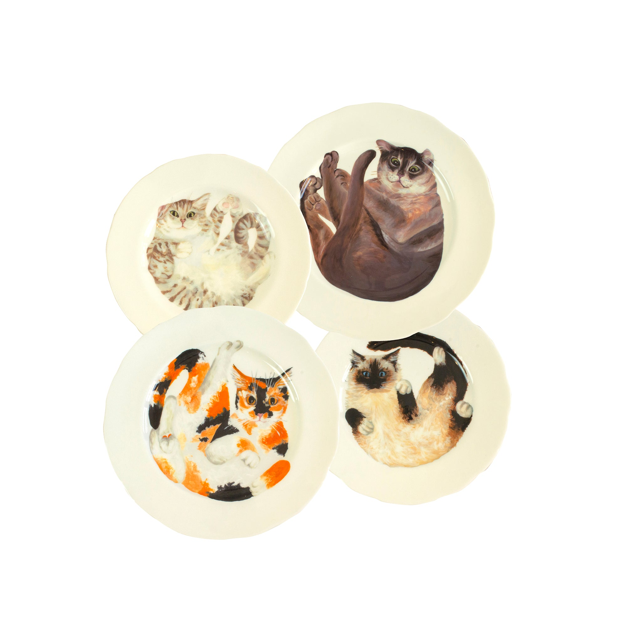Four white china plates with one illustrated tabby cat, one tortoiseshell cat, one burmilla cat and one ragdoll cat illustrated on them. Mix and match dinner plates! - Ideal as decorative hanging plates Catnap Design London