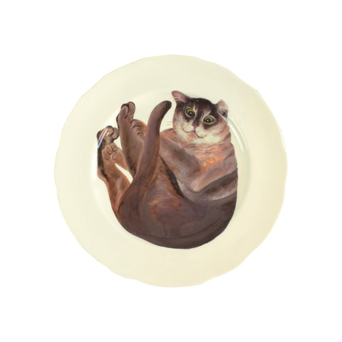 White china plate with a Burmilla cat printed on it. Aerial view of larger plate size. Catnap Design London.