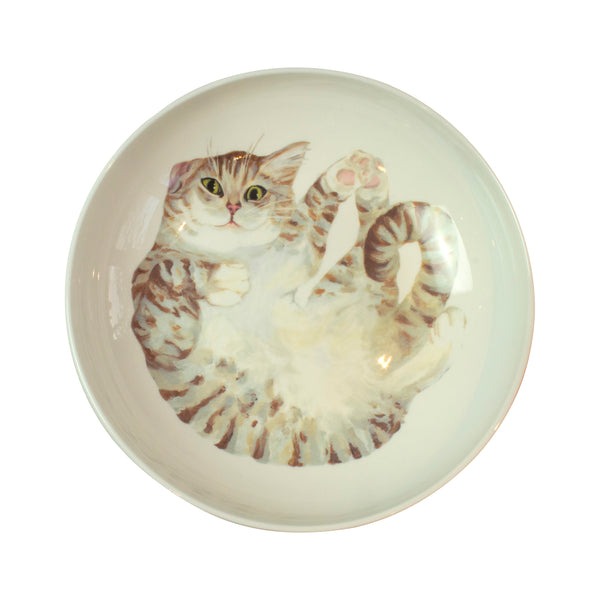 A pale tabby cat printed on the bottom of a pasta bowl. Aerial view. Catnap Design London.
