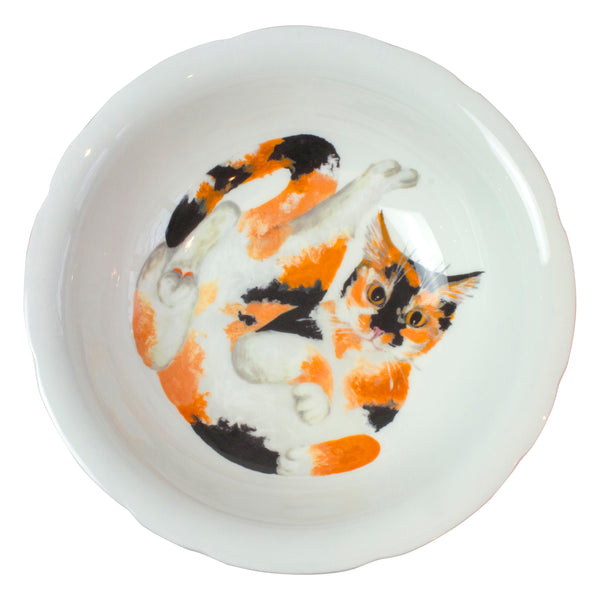 Tortoiseshell cat products. A calico cat printed on the bottom of a serving bowl. Aerial view. Catnap Design London.