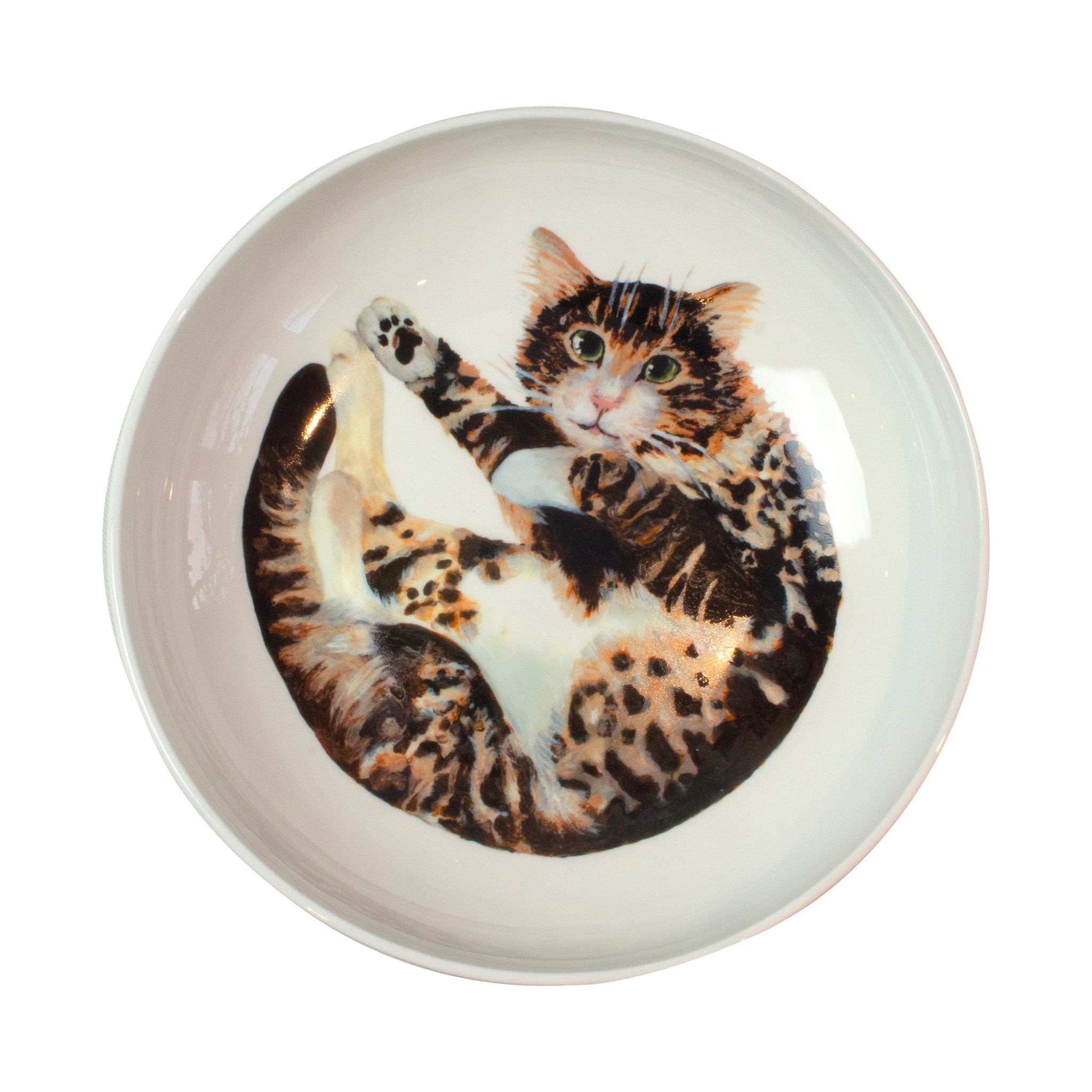 A tabby cat printed on the bottom of a pasta bowl. Aerial view. Catnap Design London.