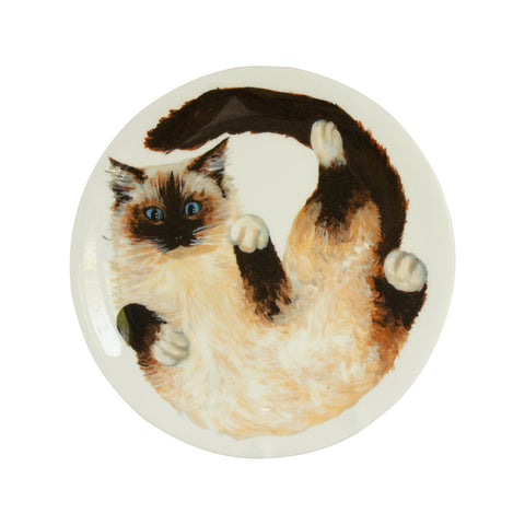 Cat plate. A white china coupe plate with an illustrated Ragdoll cat printed on it. Front view of plate.