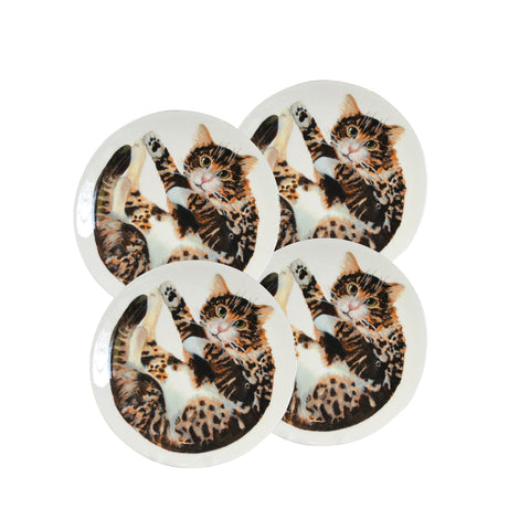 White china plates with illustrated tabby cat printed on them. Catnap Design London.