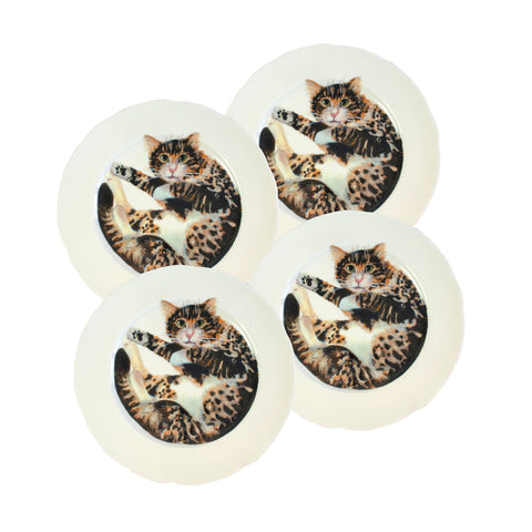 White china plates with illustrated tabby cat printed on them. Dinner Plate Size. Catnap Design London.