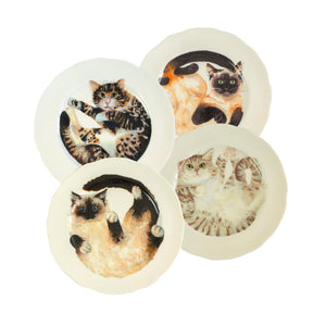 Four white china plates with two illustrated tabby cats, one siamese cat and one ragdoll cat illustrated on them.Mix and match dinner plates! Choose from six curled up cats to buy as a set of four! Catnap Design London