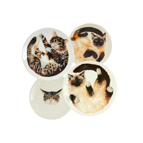 Four white china plates with two illustrated tabby cats, one siamese cat and one ragdoll cat illustrated on them. Mixed size set of 4 cat plates - Ideal as decorative hanging plates Catnap Design London