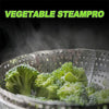 Vegetable SteamPro - shinyshinyday