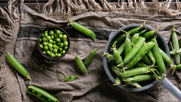 Planting Peas for Beginners - Hanna Sillitoe
