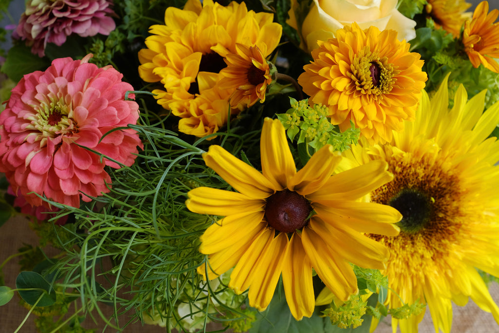 Local Zinnias and Sunflowers from Greenhouse 17 at Michler's Florist
