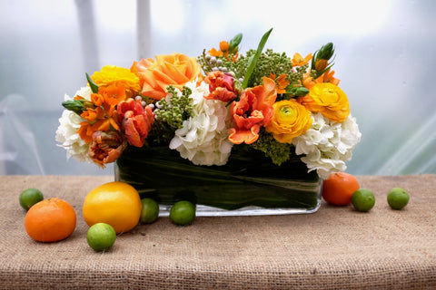 Alice: Thanksgiving centerpiece with citrus, ranunculus, tulips and Ornithogalum dubium