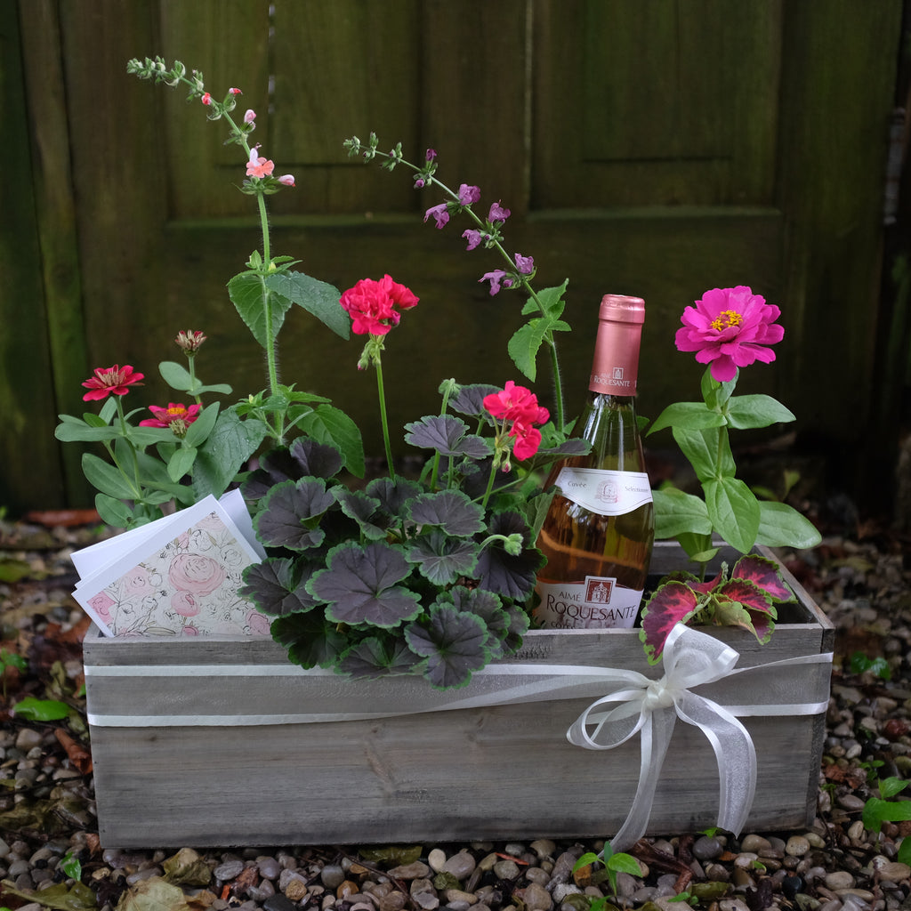 Annual Flowers and Wine Gift Box