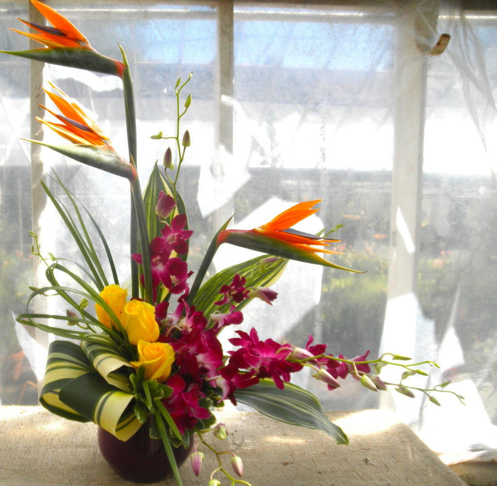 Floral arrangment by Michler's Florist with birds of paradise and orchids