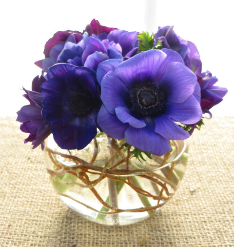 A flower arrangement of blue Anemones designed in a glass bubble bowl by Michler's Florist in Lexington, KY