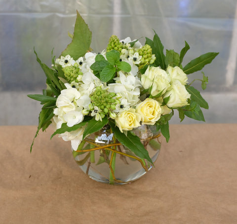Buttercream: Flower Arrangement with white Hydrangea, Cream Roses and Star of Bethlehem.  Designed by Michler's Florist in Lexington, KY
