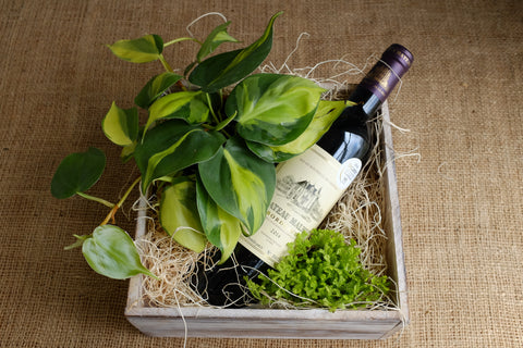 Wine gift crate box with tropical foliage plants