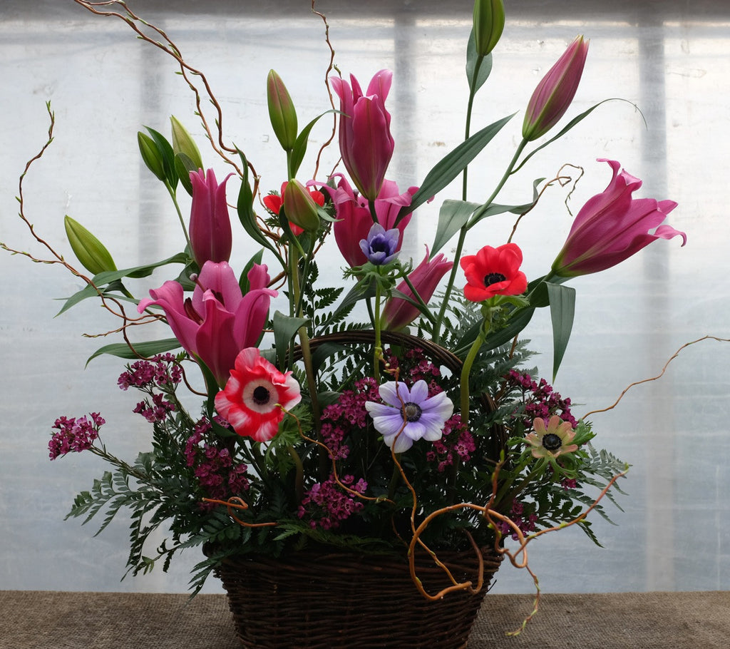 Granard Funeral Basket with Lilies and Anemones. Designed by Michler's Florist in Lexington, KY
