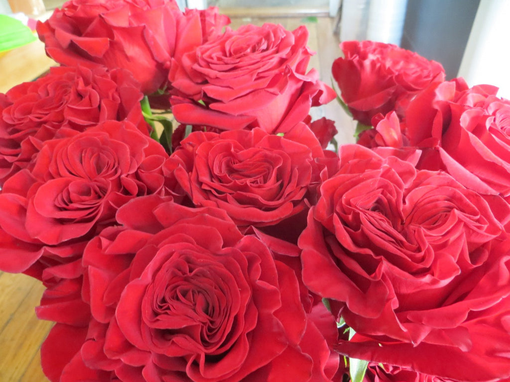 'Hearts' Roses at Michler's Florist in Lexington, KY