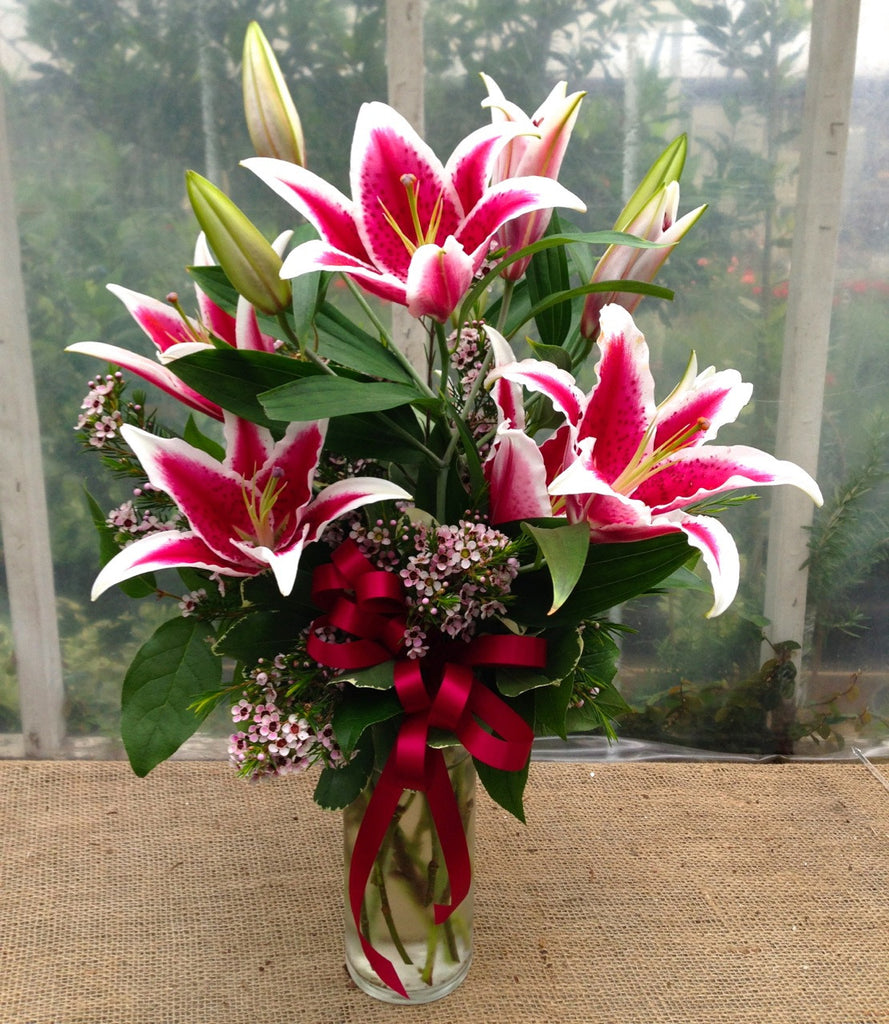 Stargazer Lily Arrangement, Designed by Michler's Florist in Lexington, KY