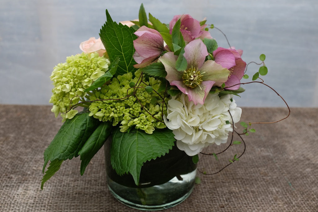 Melrose: Floral arrangement whith white and green Hydrangea, Buttercream: Flower Arrangement with white Hydrangea, and Hellebore (Lenten Roses), designed by Michler's Florst in Lexington, KY