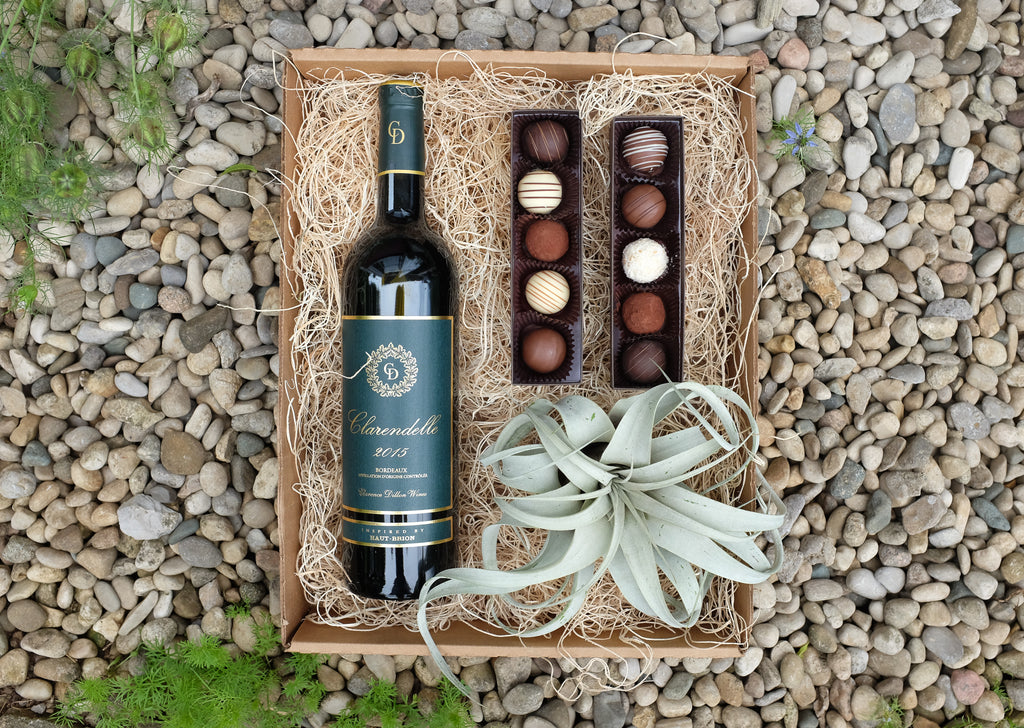 Gift Box with Red Wine Chocolate and Air plant