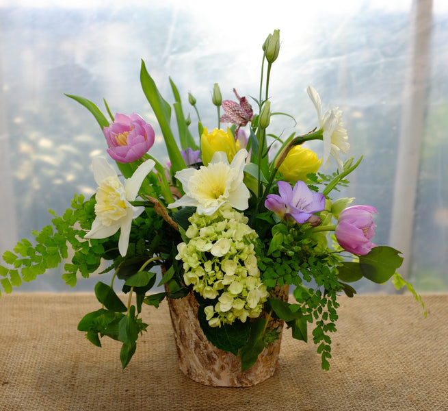 Belleau Wood Flower Arrangement with tulips, daffodils, and hydrangea. Michler's Florist | Lexington, KY