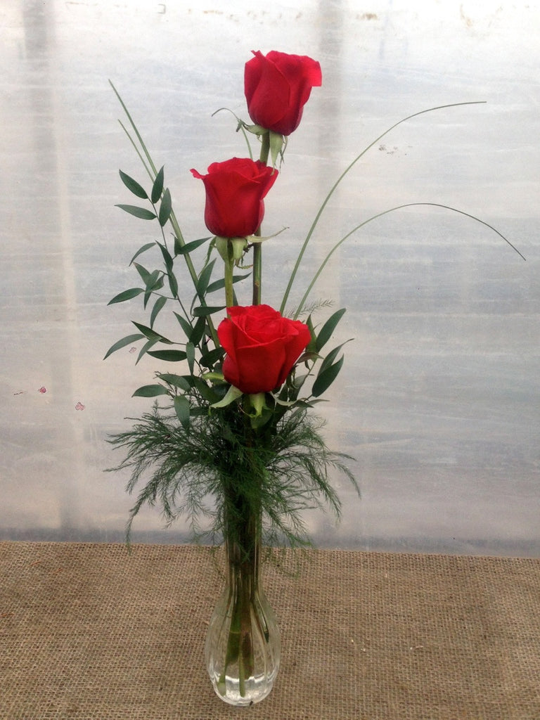 Three Red Rose Bud Vase