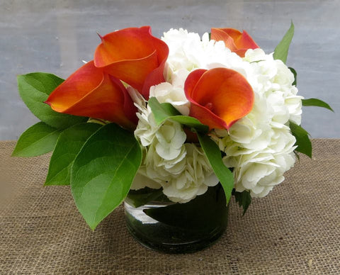 Valencia: Thanksgiving centerpiece with orange calla lilies, lemon leaves, and white hydrangea.
