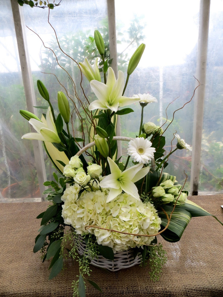 Georgetown Basket: White hydrangea, lilies, gerbera daisies, and spray roses. Designed by Michler's Florist in Lexington, KY