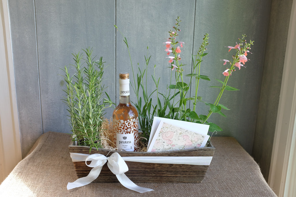Rose wine gift box with herb plants