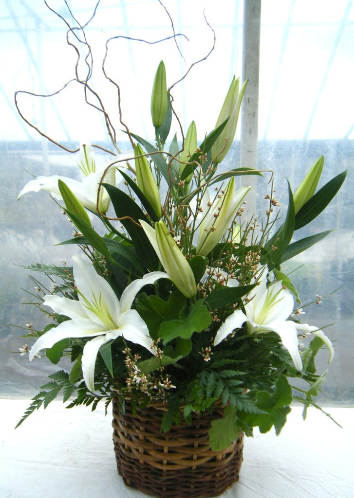 Lily Basket: Wicker basket arrangement with white lilies, willow branches and greenery. Designed by Michler's Florist in Lexington, KY