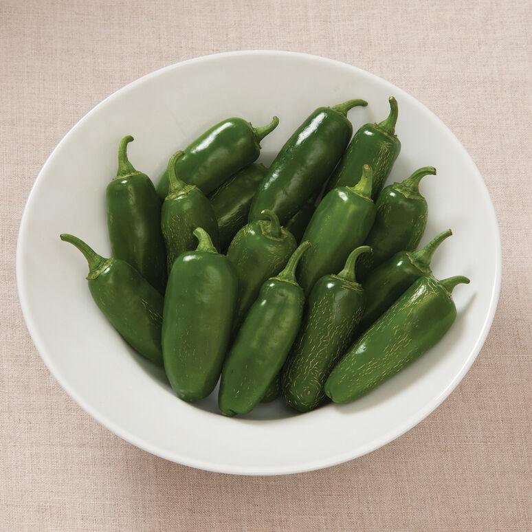 Pepper - Early Jalapeño