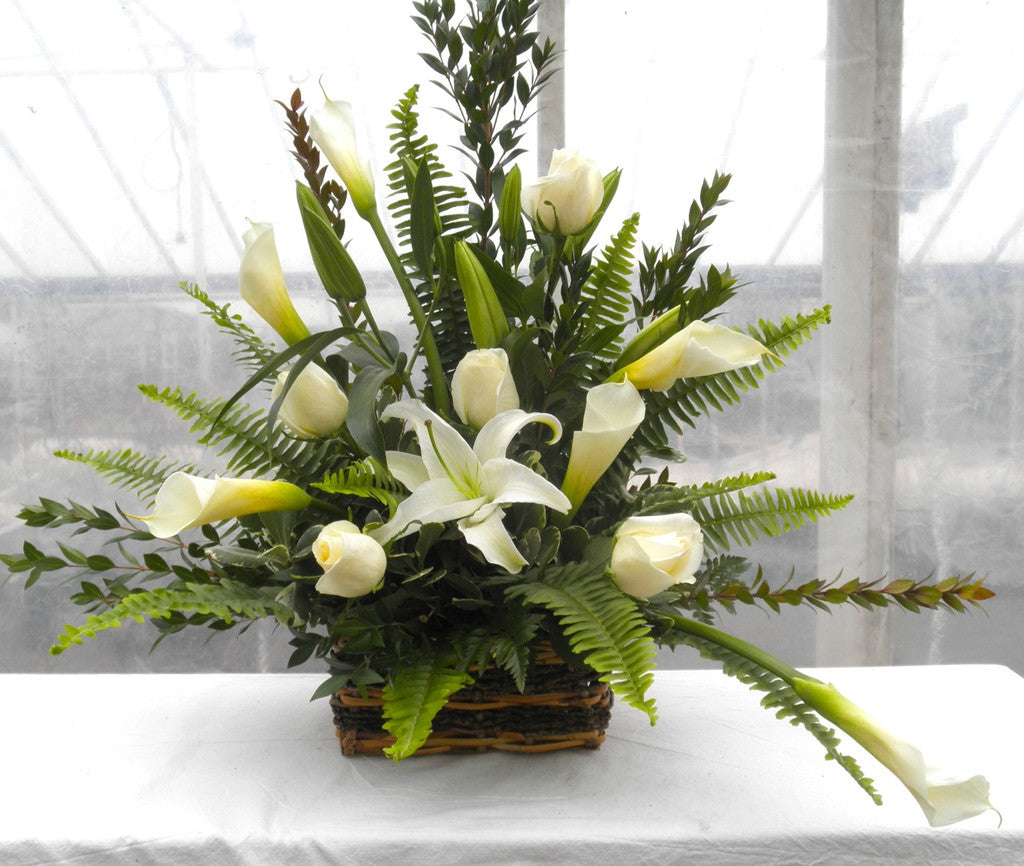LaFayette Funeral Basket: Long-stem white Roses, elegant Calla Lilies in a Wicker Basket.  Michler's Florist in Lexington, KY