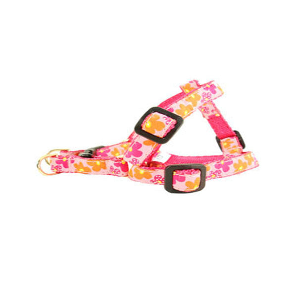 Flower Harnesses, Leads, Collars
