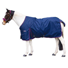 Loveson Turnout Sheet 0g Navy/Pink/Navy/Silver 69