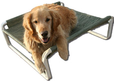 Rover Company Elevated Dog Bed, 30 by 36-Inch, Autumn Fern