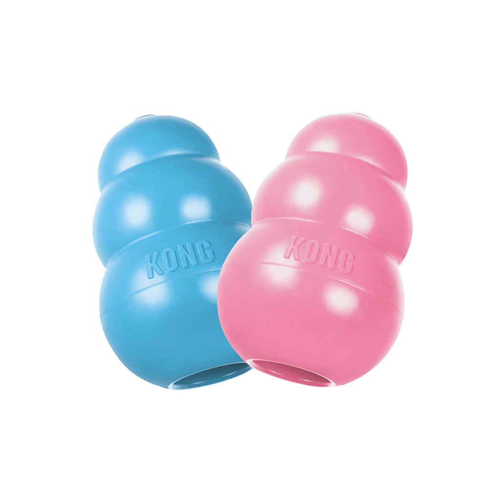 KONG Puppy Toy Assorted Pink or Blue Medium