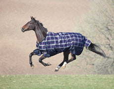 Shires Winter Highlander 200G Turnout Blanket 69