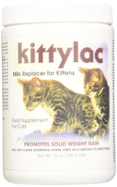 Kenic Kittylac Milk Replacer for Kittens, 12-Ounce