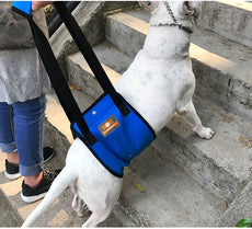 Blue Dog Lift Support Harness with Handle for Canine Older or Injuries Hind Leg-Lifting K9 for Injuries, Arthritis or Joints. Large Breed Assist Sling for Rehabilitation & Stability & Mobility? Blue