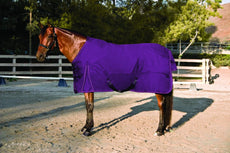 Kensington All Around 1200 Denier Foal Turnout Neck Warmer EP-Plum 28-42""