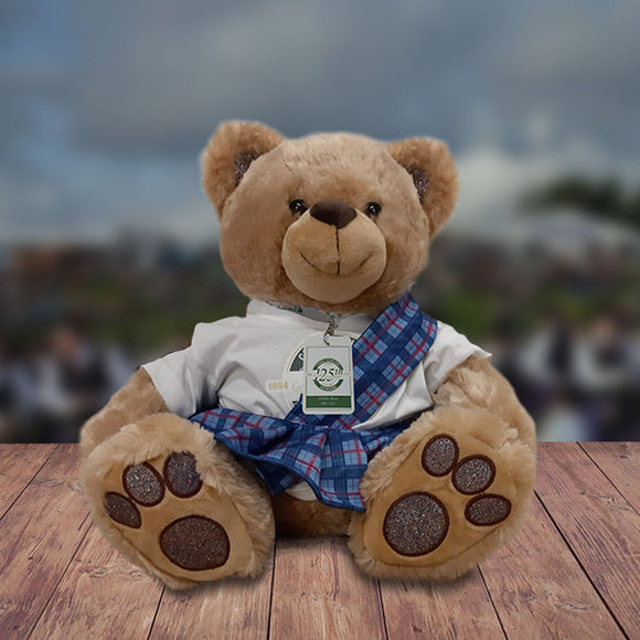 The Cowal Gathering 125th Anniversary Ghille Teddy Bear