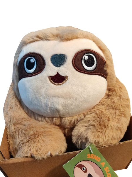 Why Sending a Sloth in a Box is an Amazing Gift Idea