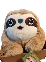 Send a Sloth in a Box Blog Post