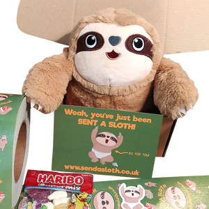 Sloth Gift Box Idea